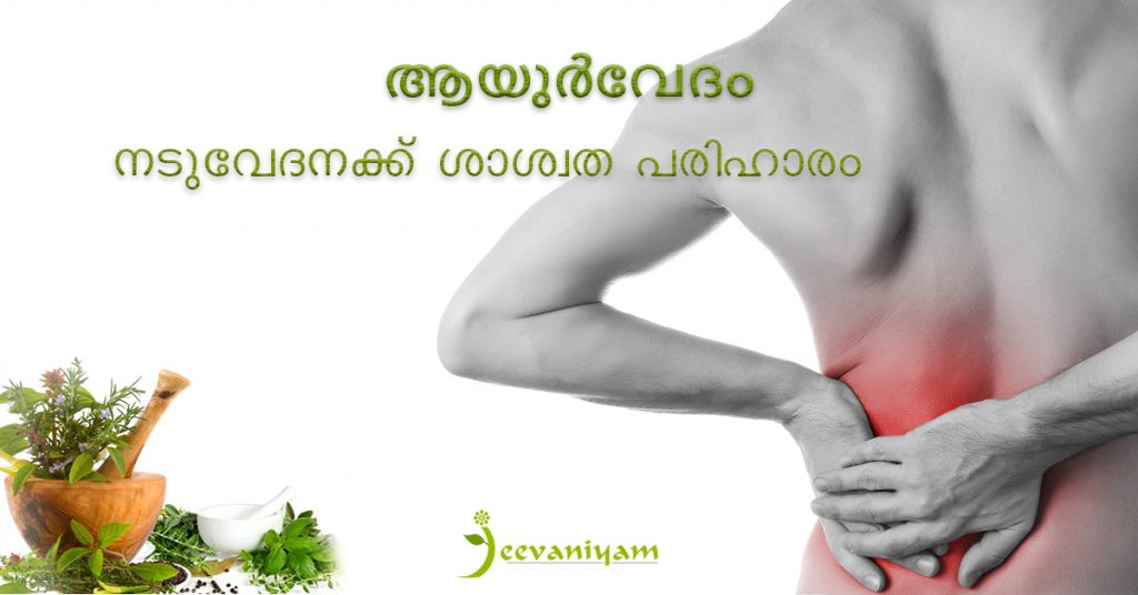 ayurvedic solution to back pain